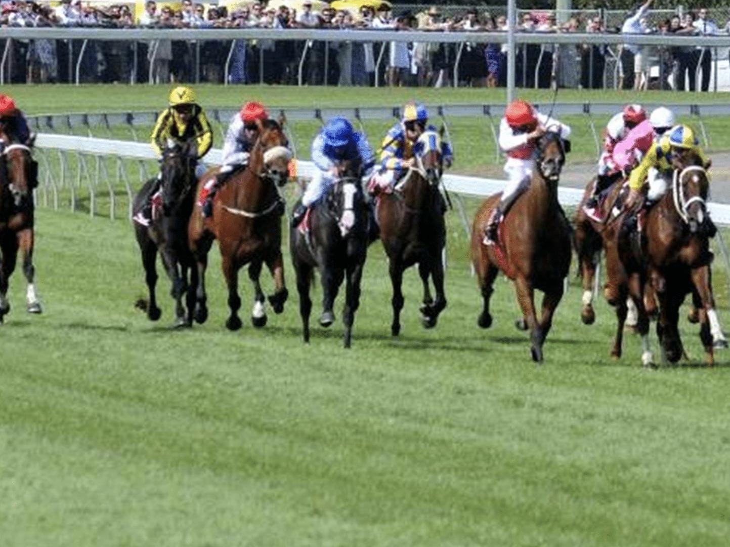 Mowbray Racecourse Tasmania